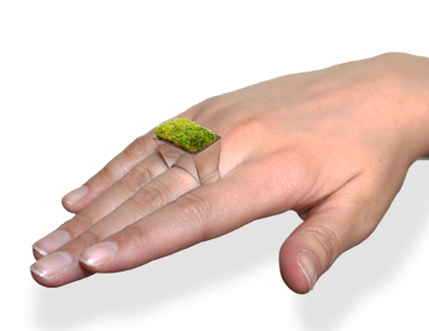 Anillo con planta que crece
