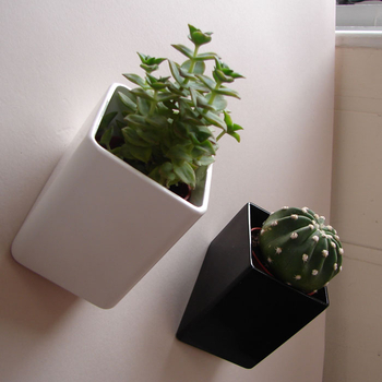 Macetas de pared para decorar