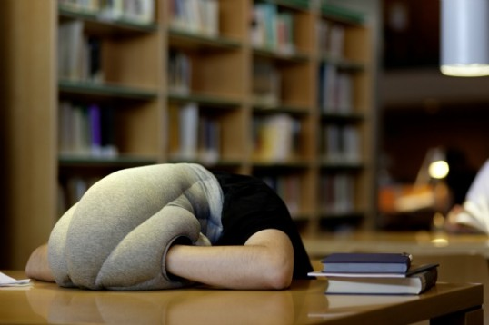 OSTRICH-PILLOW_Studio-Banana-THiNGS_kawamura-ganjavian_01