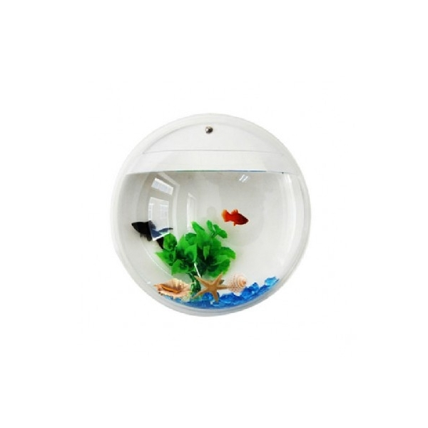 Acuario macetero de pared ocompras for Acuarios originales